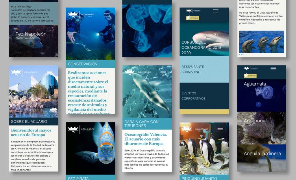 Página web del Oceanogràfic